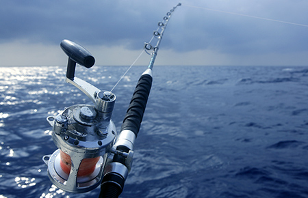 Deep Sea Fishing Adventure